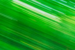 Light Abstract Natural Green Motions Background Stock Photos