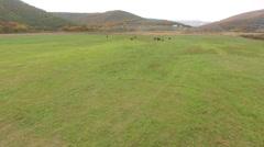 Aerial Idyllic farm pastures - stock footage