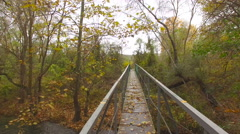 Bridge over the river in the forest Stock Footage