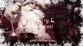 Merry Christmas Slideshow AE Template