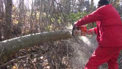 Man worker  dressed red cutting horizontally placed log in the forest Stock Footage