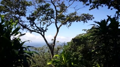 View from the mombacho volcano in Nicaragua Stock Footage