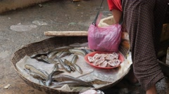 Woman shovels living fish in bamboo basket,Siem Reap,Cambodia Stock Footage