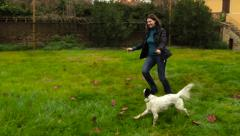 Young woman playing with a dog setter. Slow motion. Stock Footage
