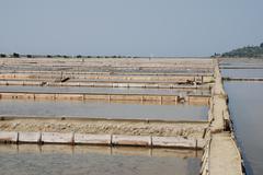 Salt Flats at Seca, Slovenia Stock Photos
