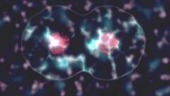 Stylized cells splitting, dividing and multiplying - stock footage
