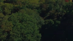 Aerial shot of New York Central Park, trees. Stock Footage