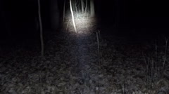 POV shot as you walk through a spooky scary forest at night. - stock footage