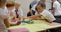 Children working together on science project Stock Footage
