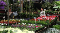 People do shopping at the flower market in Amsterdam, Netherlands. Stock Footage