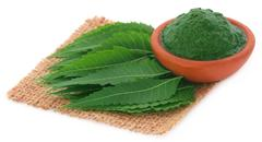 Medicinal neem leaves with ground paste Stock Photos