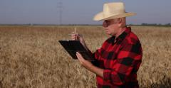 Agriculture Specialist Study Ear Wheat Harvest Grain Production Notes Clipboard Stock Footage