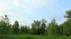Movement of clouds over the meadow. Lubinsky District, Omsk Region, Russia Stock Footage