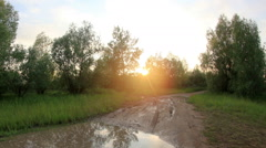 Sunset in the forest after the rain clouds reflected in a puddle.  Stock Footage