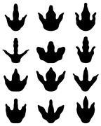 Footprints of dinosaur Stock Illustration