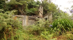 Abandoned house in a forest Stock Footage