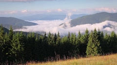 Colorful summer morning in the foggy Carpathian mountains. Stock Footage