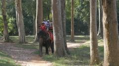 Stock Video Footage of Tourists make elephant ride around Bayon,Siem Reap,Cambodia