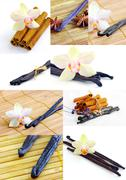Vanilla spice with flowers of orchids - stock photo