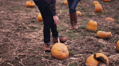 An attractive young family searching for a pumpkin at the pumpkin patch Stock Footage