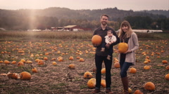 Portrait of a young family at a pumpkin patch, mom and dad holding pumpkins Stock Footage