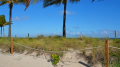 Fort Lauderdale Beach dunes Stock Footage