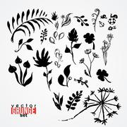 Set of painted colors, ink, mud silhouettes of plants. - stock illustration