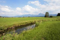 Brook in the Allgaeu (Bavaria, Germany) Stock Photos
