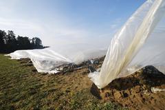 Plastic Foil Stock Photos