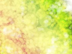 Abstract background with blurred green and yellow lights Stock Illustration