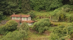 Abandoned house in a forest. Semitropics Stock Footage