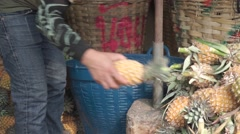 Unrecognizable crafty man cutting pineapple leaves Stock Footage