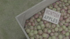 Pan Apples With Mcintosh Sign Stock Footage