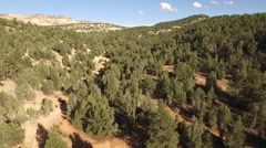 Aerial Over Mountain Forest Stock Footage