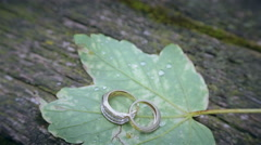 Wedding rings on a green leaf Arkistovideo