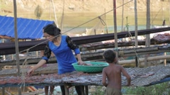 Woman collecting dried fish from track,Battambang,Cambodia Stock Footage