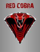 Amazing Red King Cobra - stock illustration