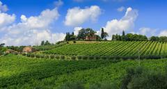 Agricultural landscape in Tuscany - stock photo