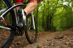 Man Cyclist Riding on bicycle in the Summer Forest - stock photo