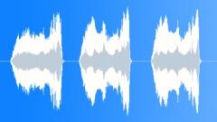 Male rowing effort shout - sound effect