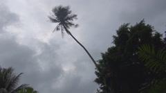 Palma stormy sky - stock footage
