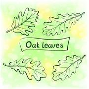 Oak Leaves, Pictogram Set Stock Illustration