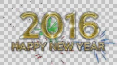 2016 Happy New Year Glimmer Alpha Arkistovideo