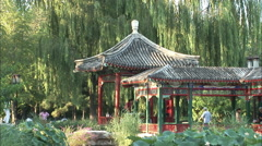 Chinese park pavilion, weeping willow trees - stock footage
