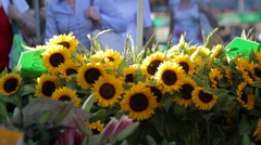 Sunflowers and Bees at Farmers Market Stock Footage