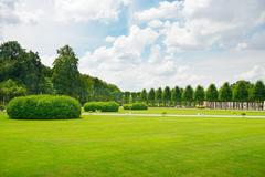 Beautiful meadow in the park Stock Photos