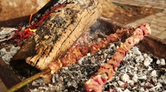 Meat skewer barbeque with fire Stock Footage