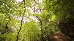 Trekking along the so called Levada on the island of Madeira Stock Footage