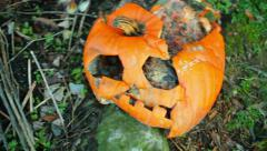 pumpkin rotting smashed outside - stock footage