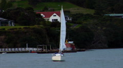 Sailboat in Harbor New Zealand Stock Footage